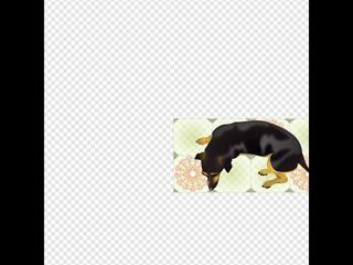 Dog Resting On Tiles