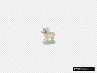 Gray Bighorn Sheep