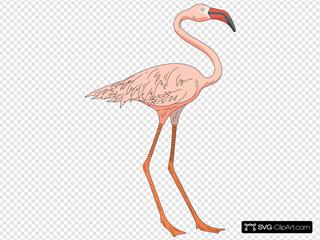 Standing Pink Flamingo