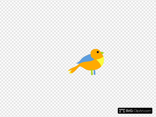 Colorful Little Bird