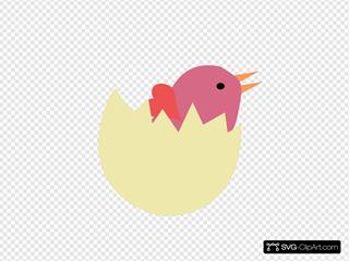 Bird In Broken Egg