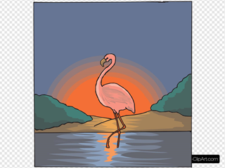 Flamingo With The Sunset