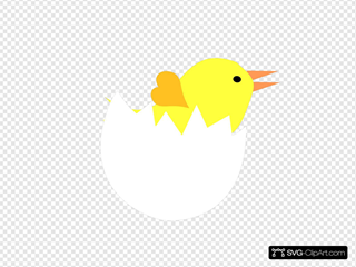 Yellow Chick In Cracked Eggshell