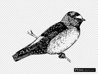 Perched Cliff Swallow SVG Clipart