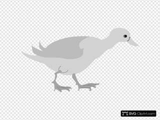 Grayscale Duck