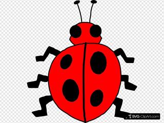 Ladybug Lady Bug