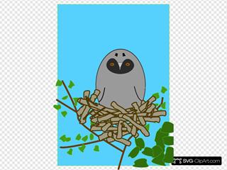 Otus Bird