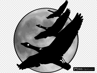 Geese In Front Of Moon SVG Clipart