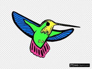 Multicolored Hummingbird