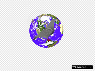 World Racing Homer Pigeon