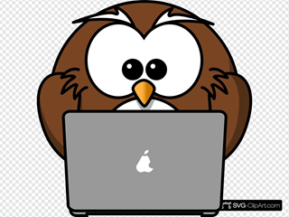 Owl Using A Laptop