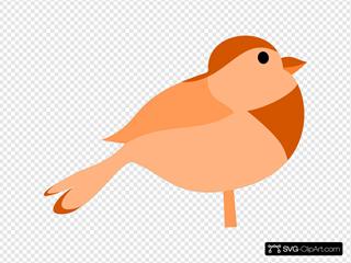 Simple Cartoon Bird