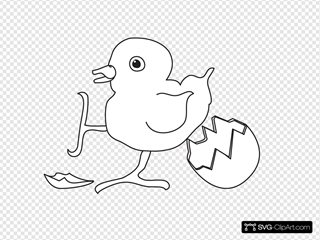 Baby Chick Hatched Outline