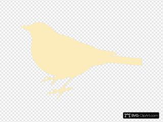 Cream Bird