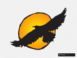 Hawk Silhouette Flying Near Sun