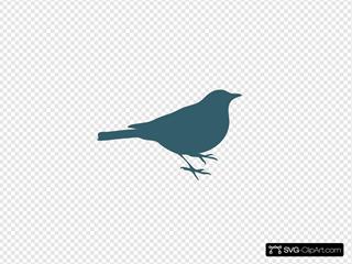 Teal Bird Silhouette