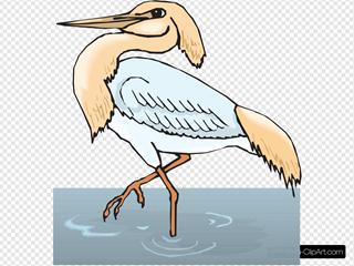 Heron In Water On One Leg