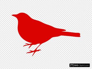 Red Bird Profile
