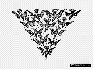 Triangle Of Birds Clipart