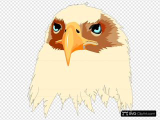 Tan Feathered Eagle Head