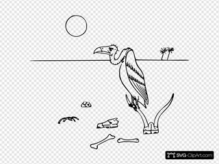 Vulture In The Desert