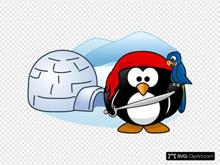 Penguin Pirate With Igloo