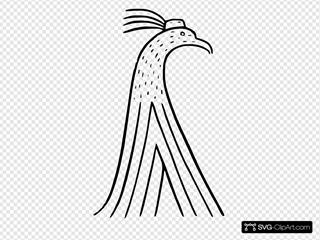 Cartoon Turkey Drawing