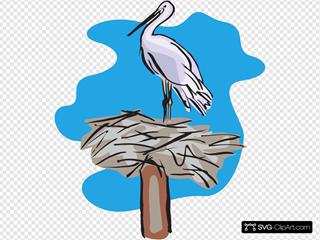 Bird Standing On Nest