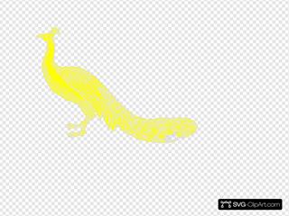 Yellow Peacock2