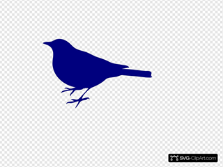 Navy Bird Silhouette
