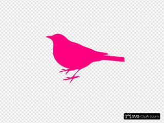 Pink Bird Silhouette Dark