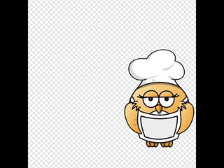 Bird Chef