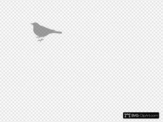 Gray Bird Silhouette