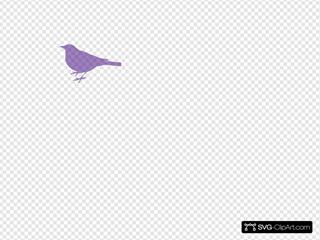 Purple Bird Silhouette