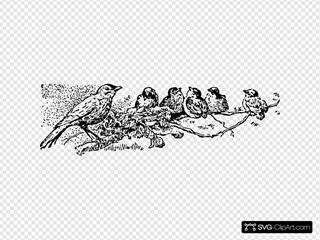 Robins SVG Clipart