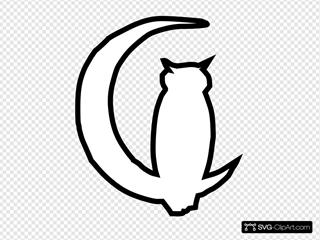 Owl Moon 3