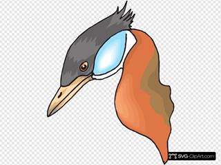 Long Necked Duck Head
