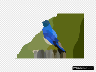 Mountain Blue Bird X