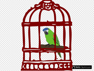 Parrot In A Bird Cage
