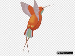 Red And Orange Hummingbird
