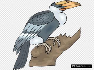 Hornbill On A Branch SVG Clipart
