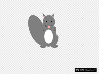 Dark Gray Squirrel