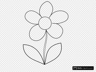 Clear Flower