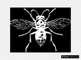 White On Black Hornet