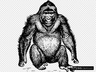 Ape Stencil