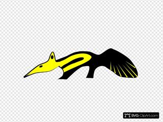 Anteater Animal