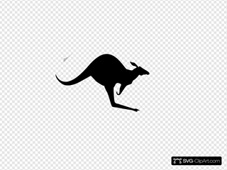 Solid Black Kangaroo