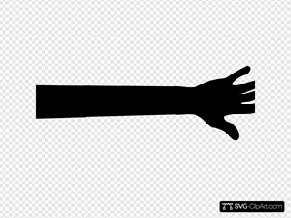Hand And Arm