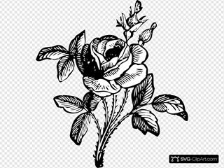 Rose SVG Clipart