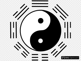 Yin Yang 7